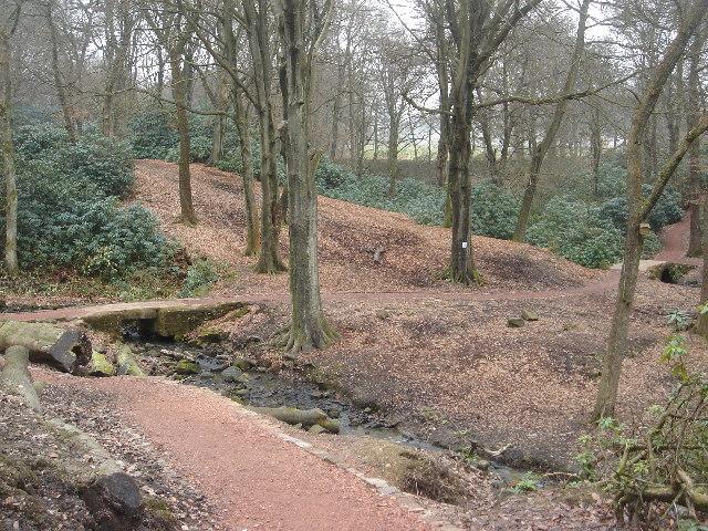 Raveden Brook nature trail near Smithills Hall - geograph.org.uk - 116116