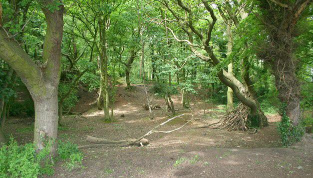Sandstone Trail, Bulkeley Hill