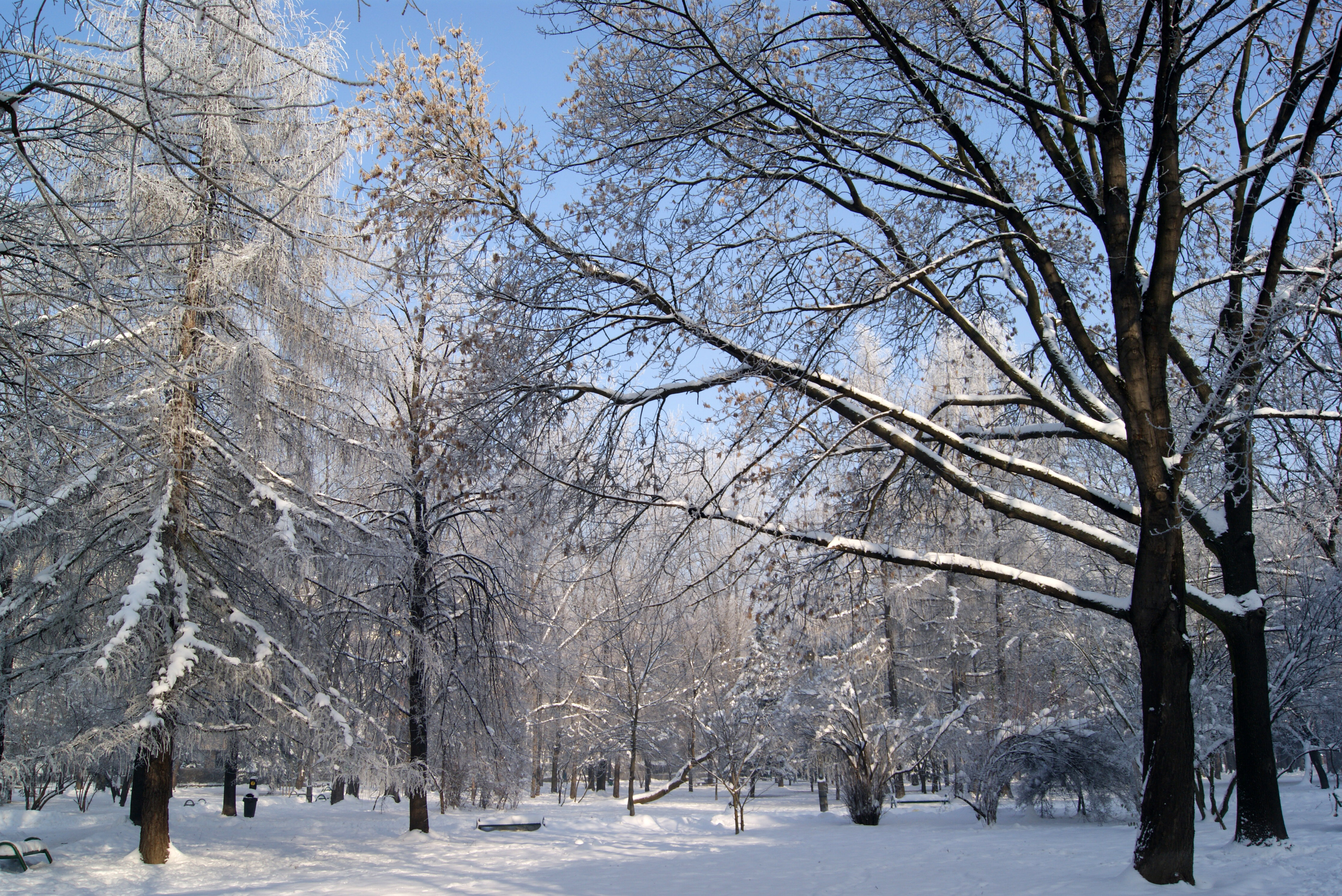description of winter Winter is the coldest season of the year in polar and temperate zones (winter does not occur in most of the tropical zone) it occurs after autumn and before spring in each year winter is caused by the axis of the earth in that hemisphere being oriented away from the sun.