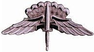 File:USASOC Military Free Fall Parachute Badge.jpg