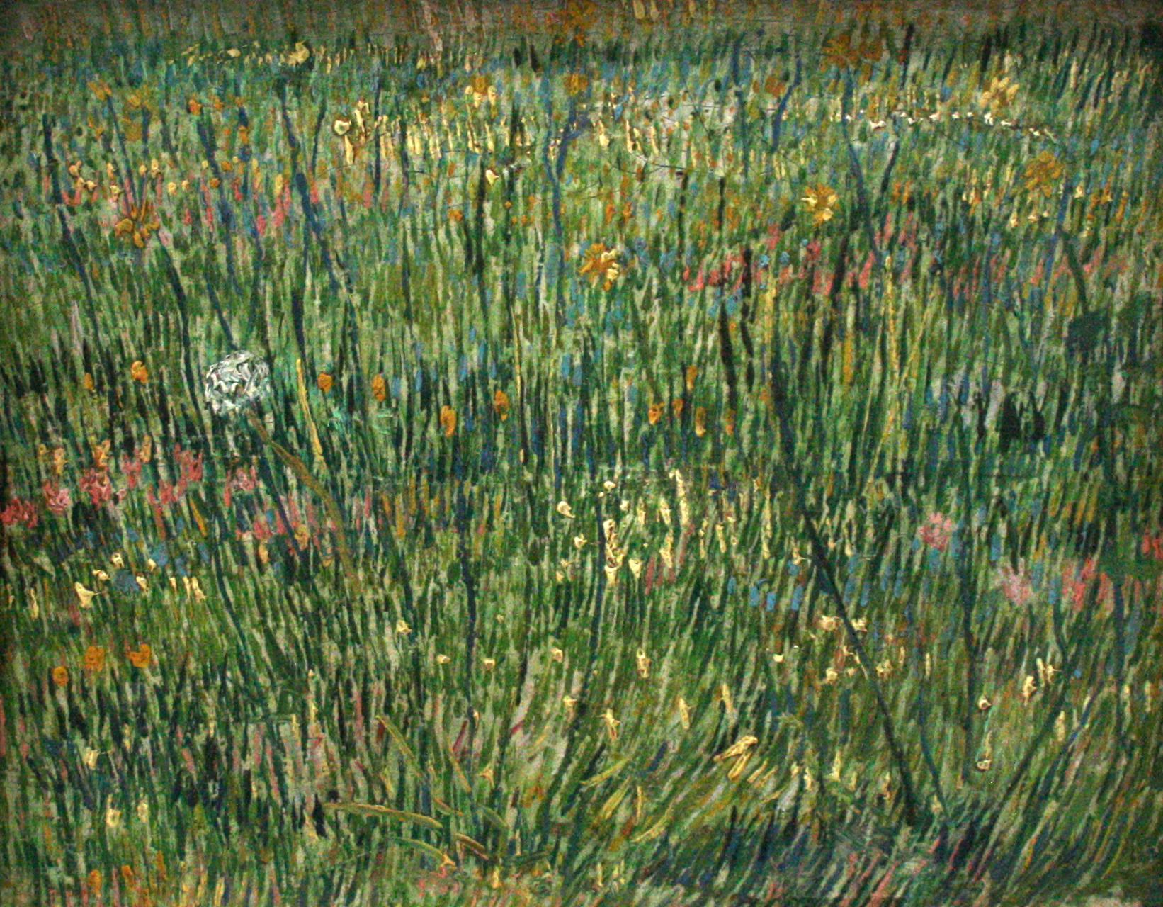 Van Gogh, Patch of grass