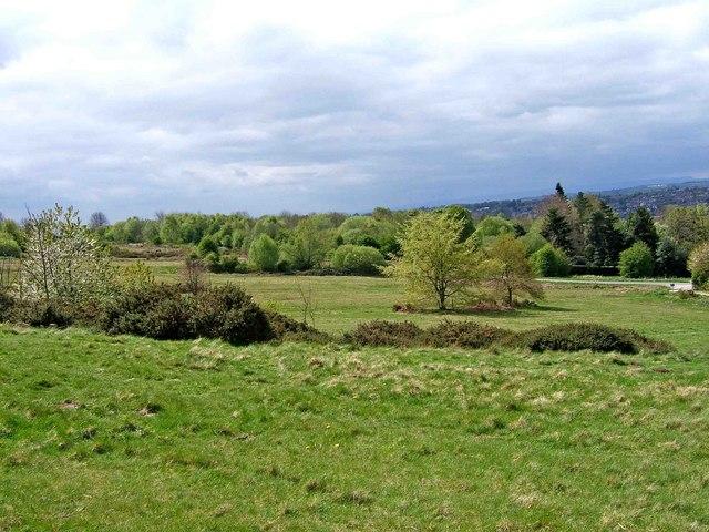 View across Bromyard Downs - geograph.org.uk - 1277547