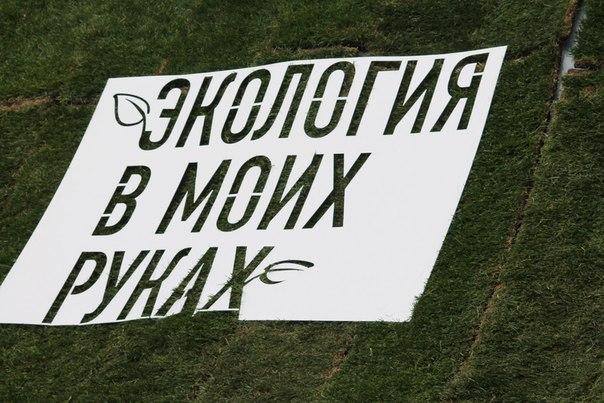 """File:Логотип эко-фестиваля """"Экология в моих руках"""" (2014).jpg"""