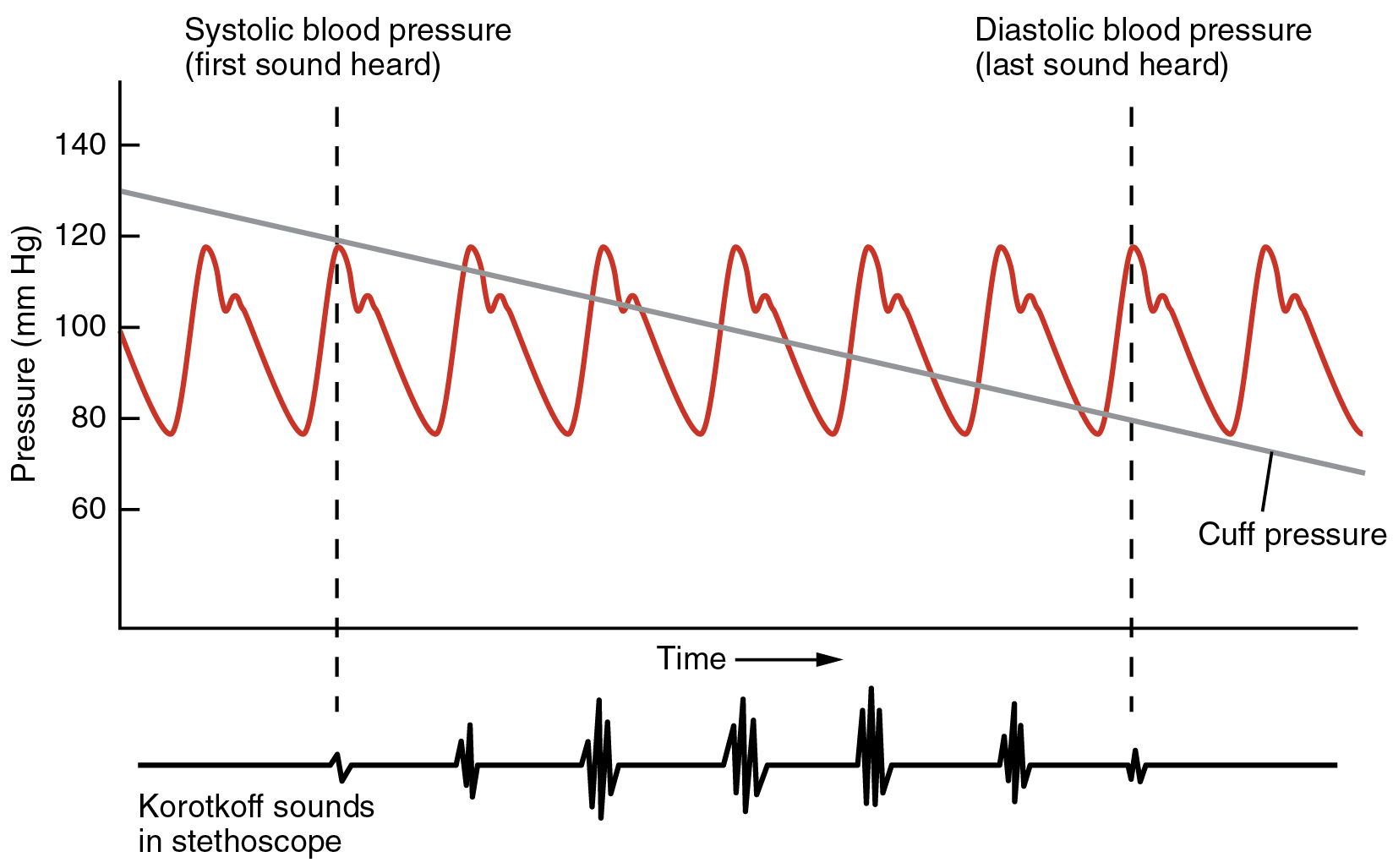 How To Graph Blood Pressure Over Time Kubreforic