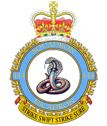Image result for 444 Squadron