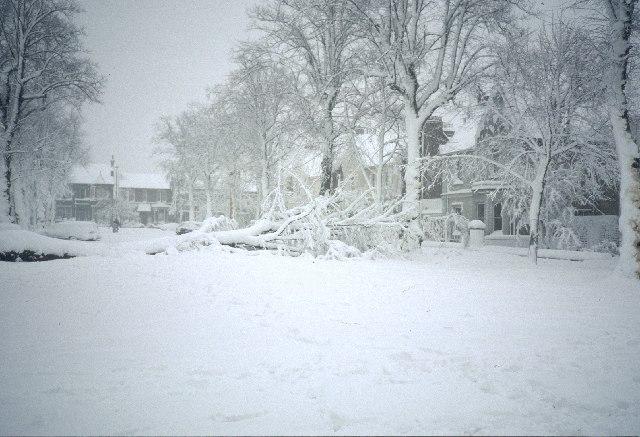 Weather Chicago Snow Storm