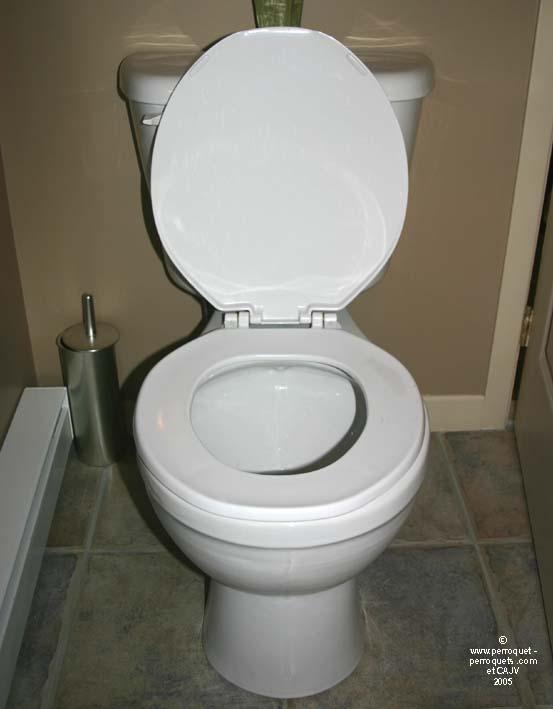 File wikimedia commons - Enlever le calcaire des toilettes ...