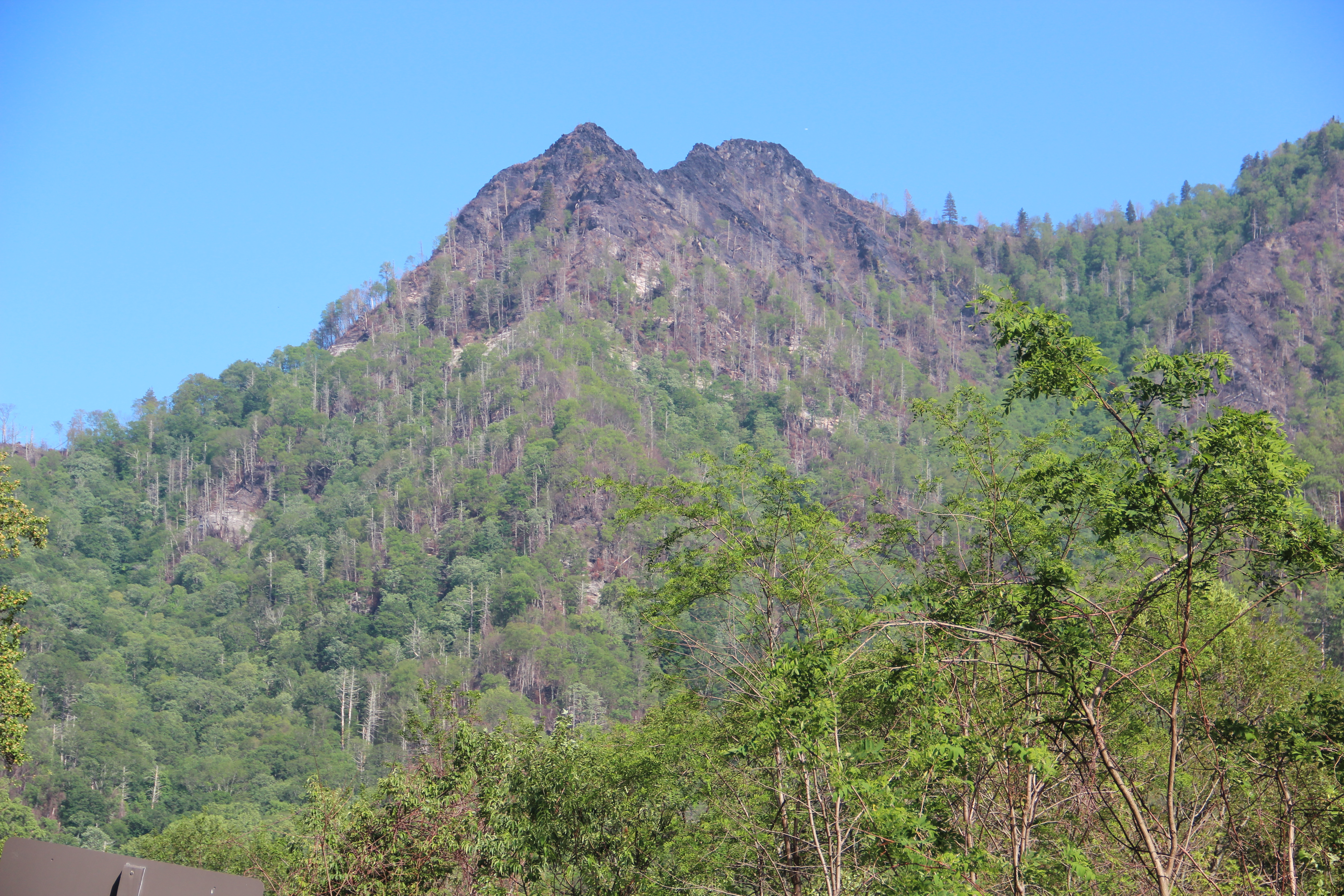 2016 Great Smoky Mountains Wildfires Wikipedia