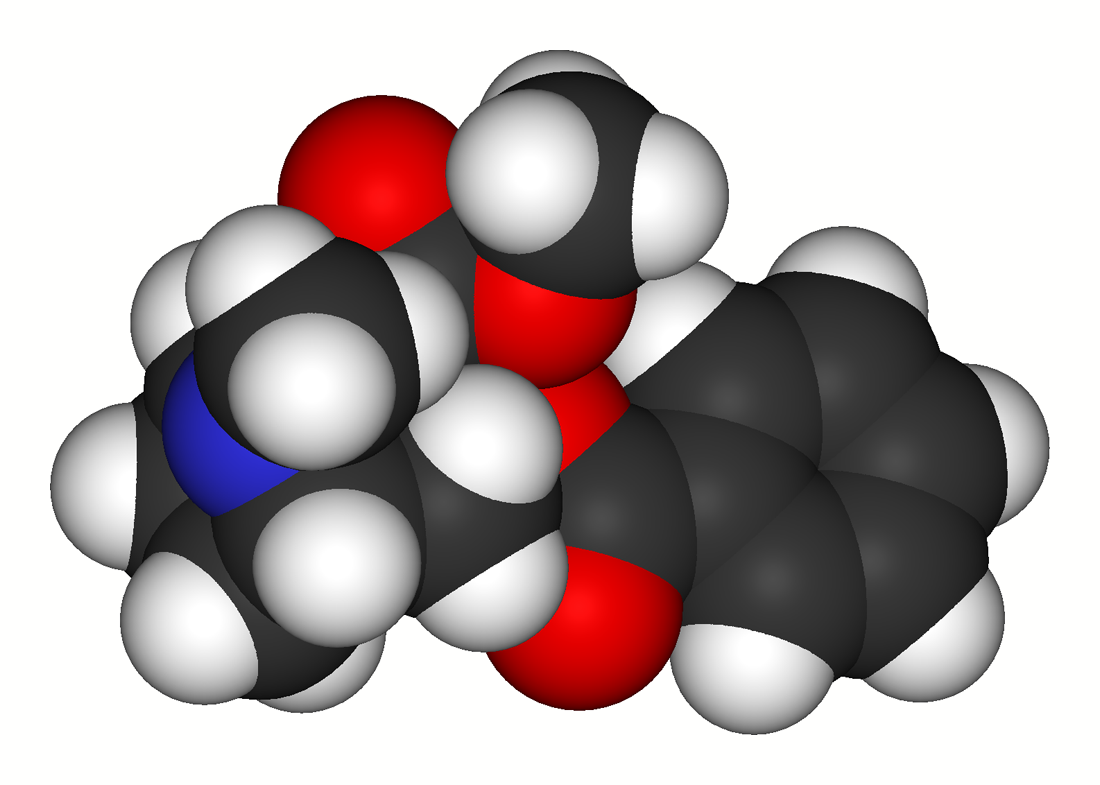 Struttura 3D molecola di cocaina