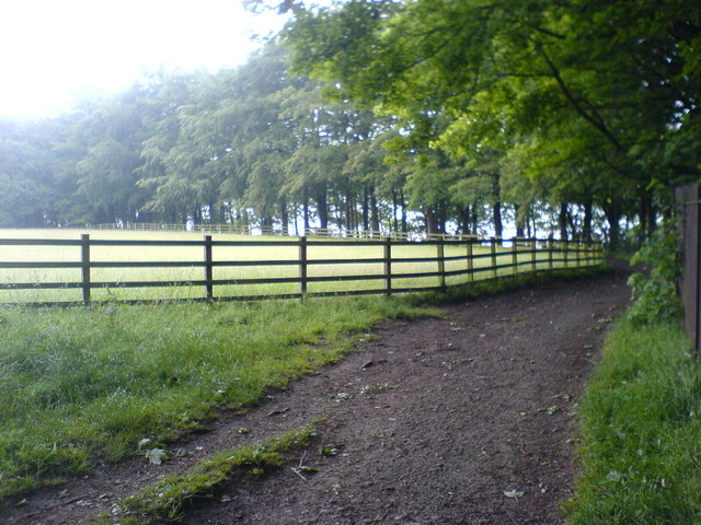 Footpath near Lower Rivington Reservoir - geograph.org.uk - 468333