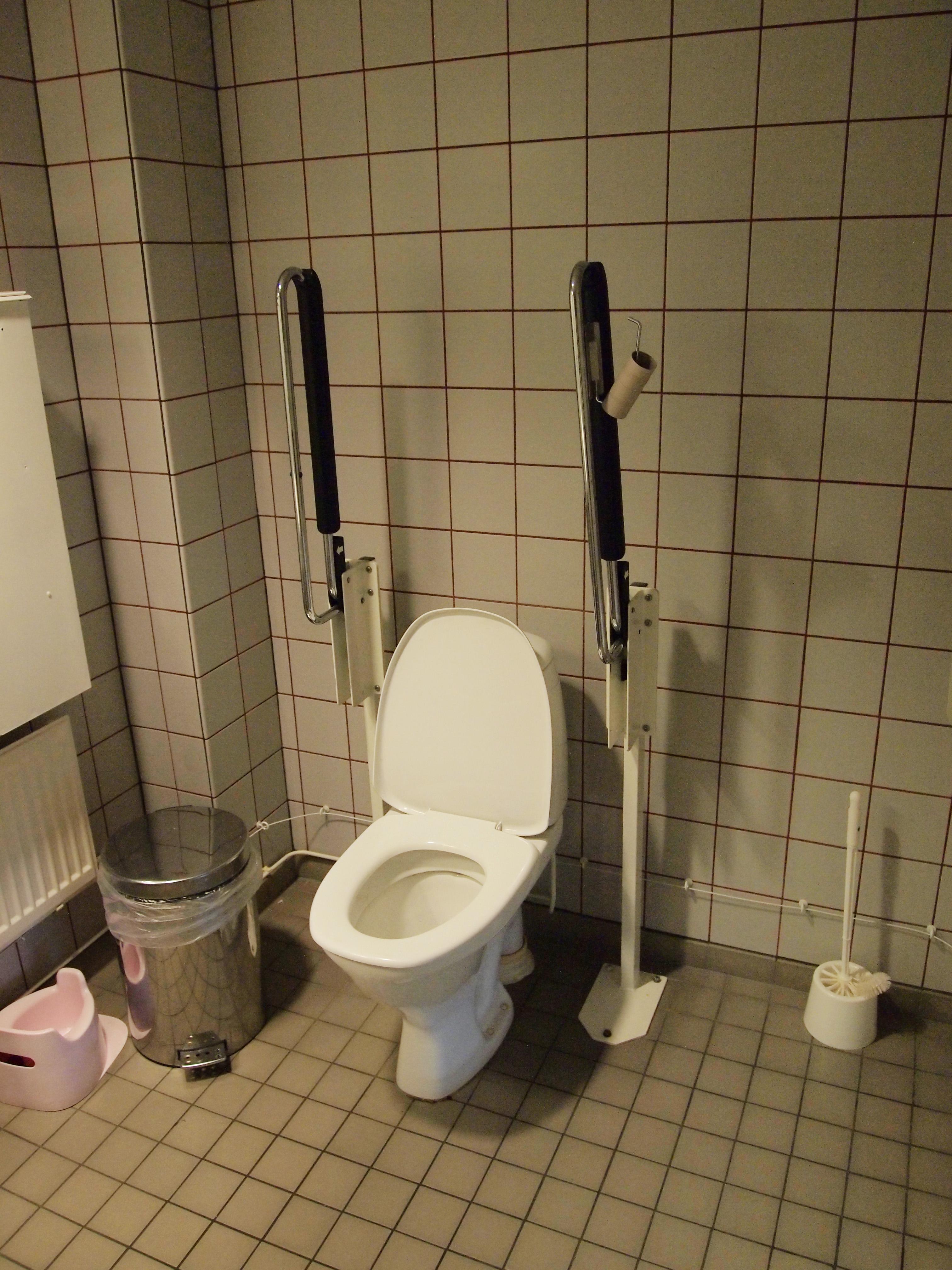 File:Handicap toilet.jpg - Wikimedia Commons