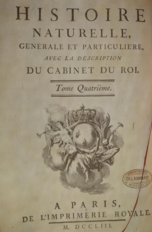 [1812] Buffon 'Natural History of Man' Quadrupeds Monkeys PLATES Vol 10