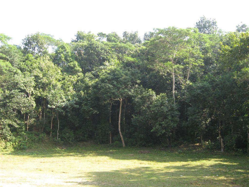 Lawachara National Park - Wikipedia