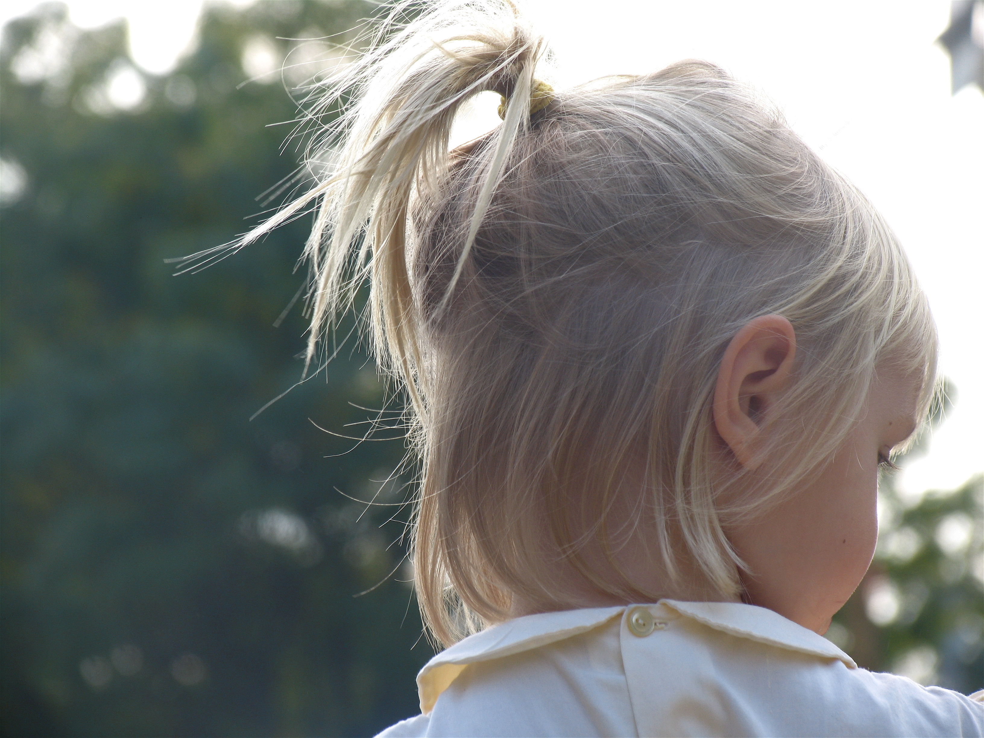 Excellent File Little Girl With A Little Ponytail Wikimedia Commons Schematic Wiring Diagrams Amerangerunnerswayorg