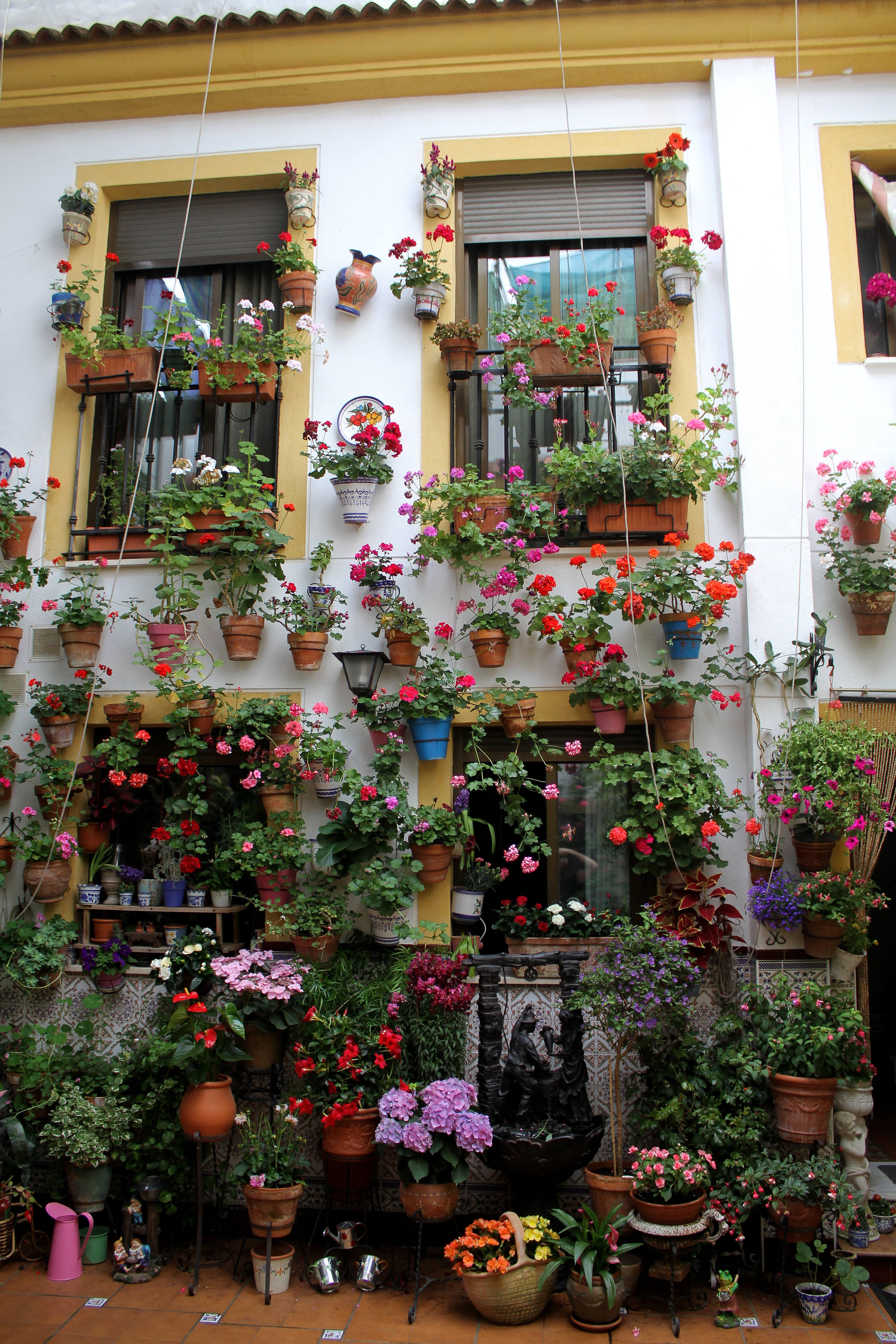 Festival de los patios cordobeses wikipedia la - Patios interiores andaluces ...