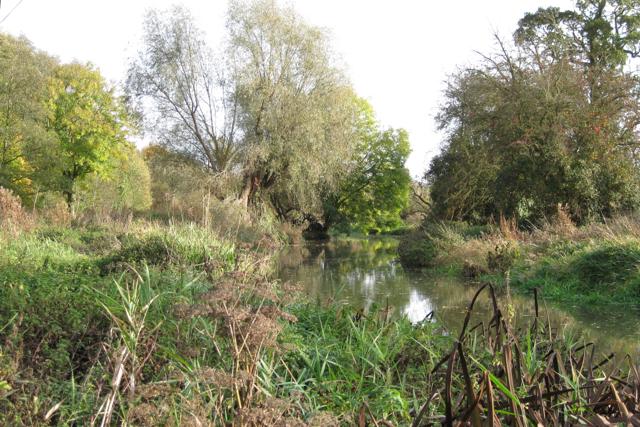 River Leam by Newbold Comyn Park - geograph.org.uk - 1563181