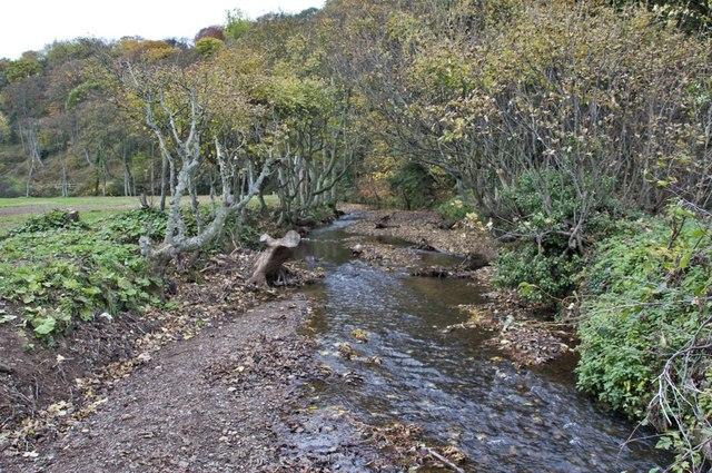 Stream, Valley Gardens, Saltburn - geograph.org.uk - 1558279