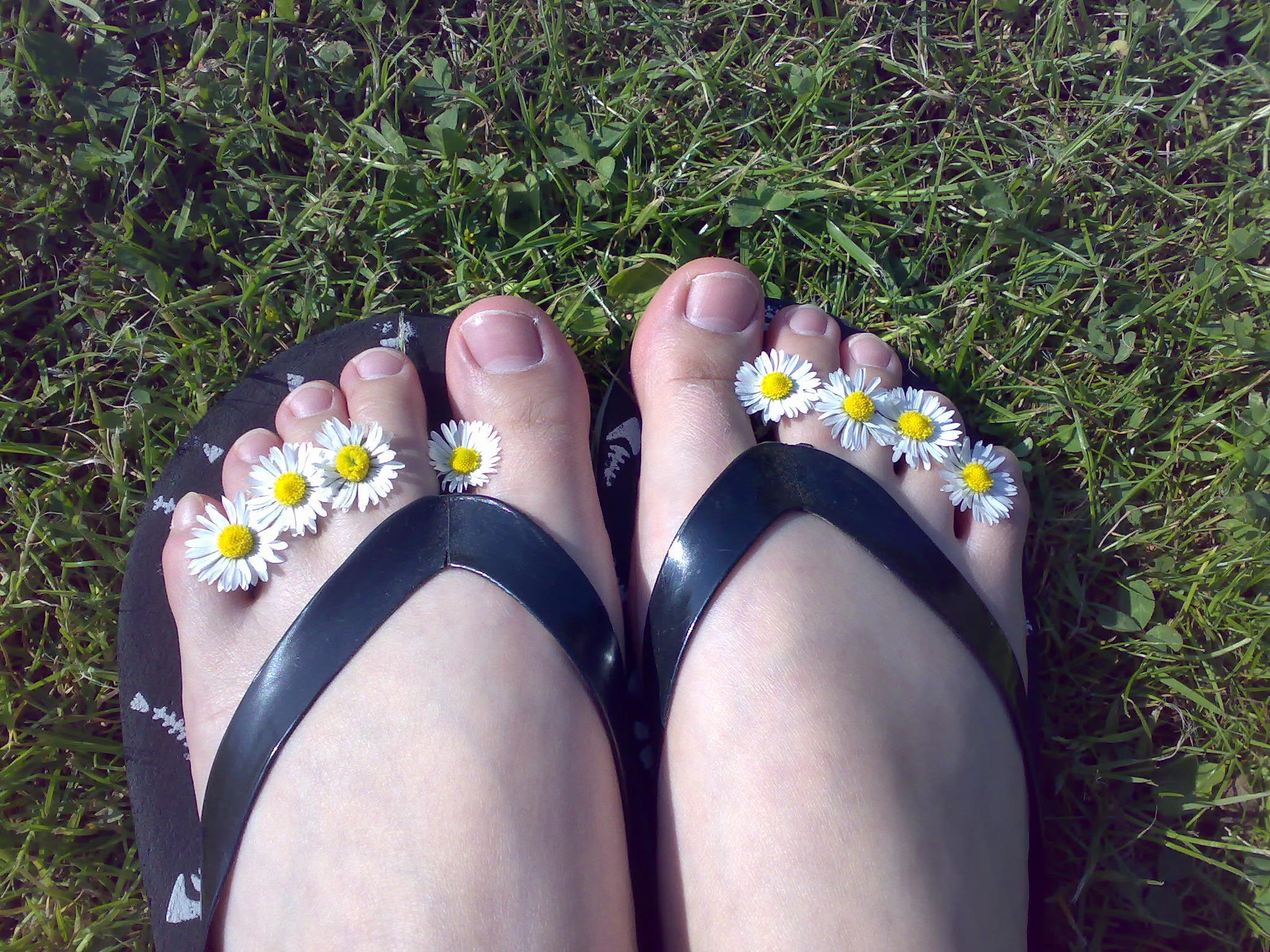 flip flops, slippers, thongs