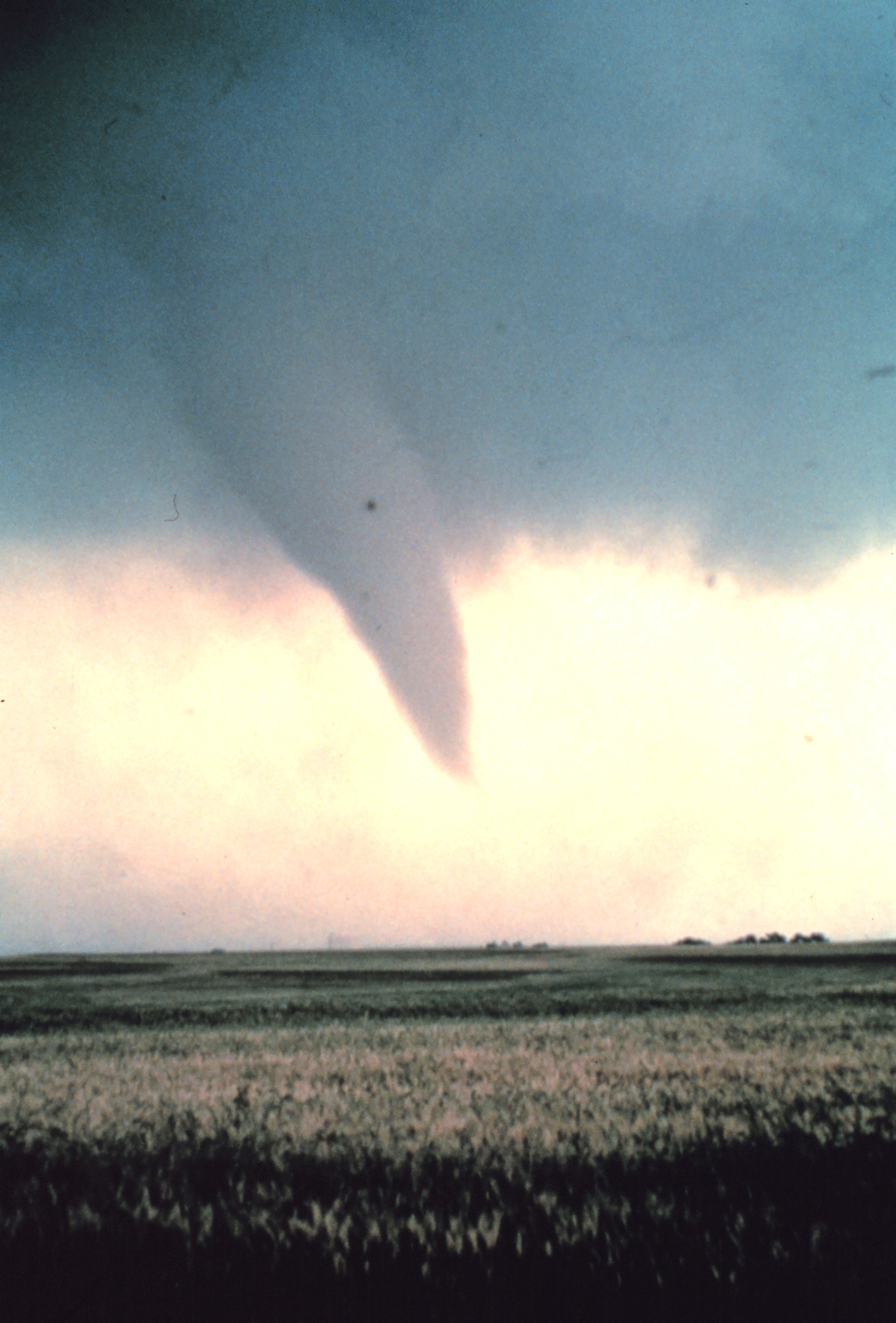 File:Tornado at beginning of life - NOAA.jpg - Wikimedia ...