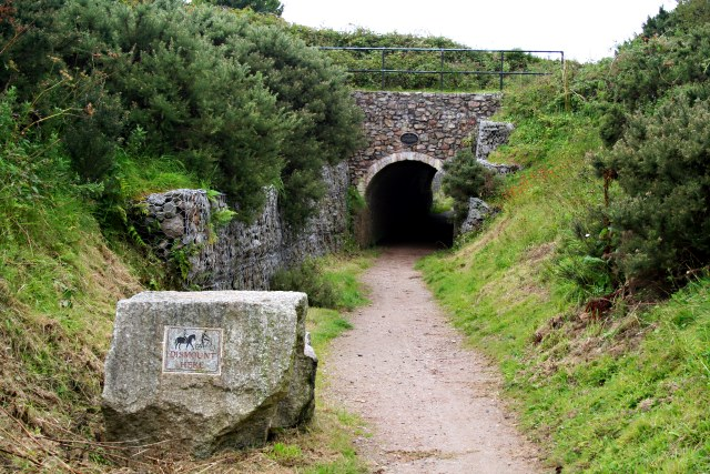 Tunnel on the Basset Tramway - geograph.org.uk - 533493