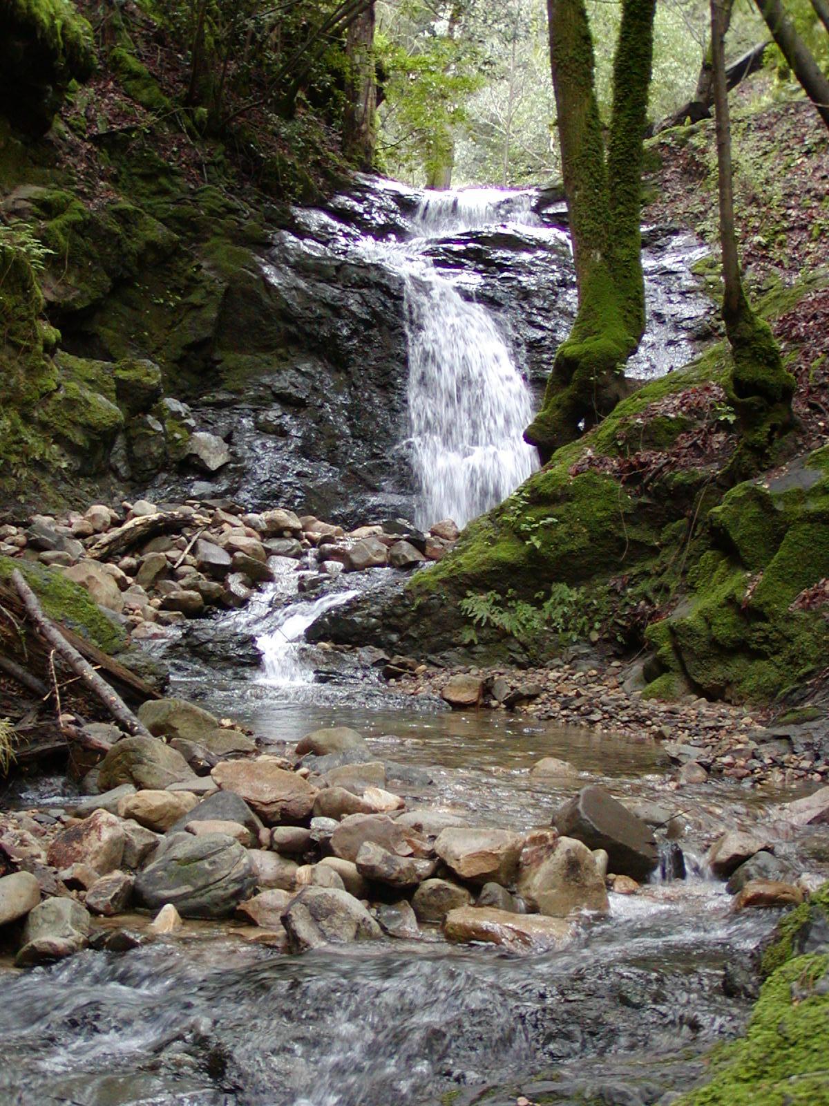 Uvas Canyon County Park - Wikipedia