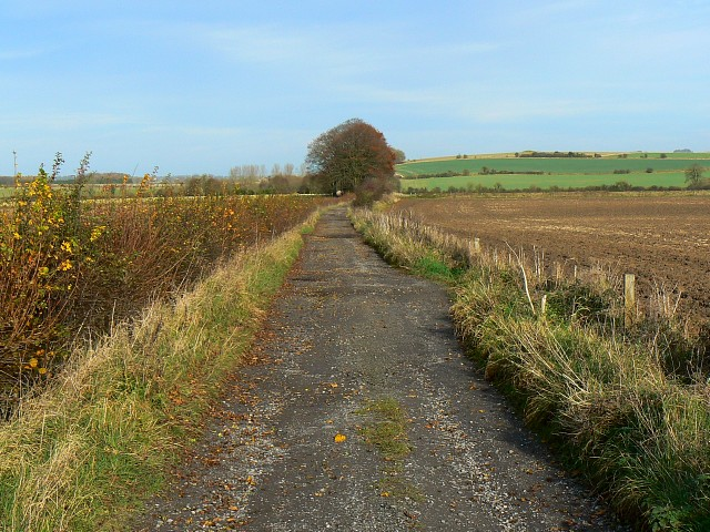 White Horse Trail, west of Beckhampton - geograph.org.uk - 1057037