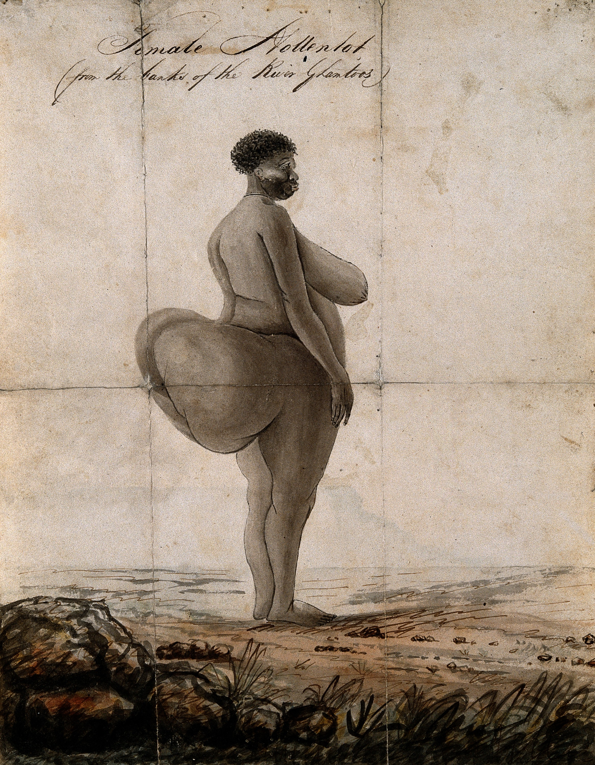 "hottentot venus Take saartjie ""sarah"" baartman, also known as the hottentot venus, a khoikhoi  woman who was born in south africa in the late eighteenth century and later."
