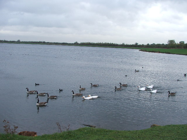 Anglers Country Park. - geograph.org.uk - 74091