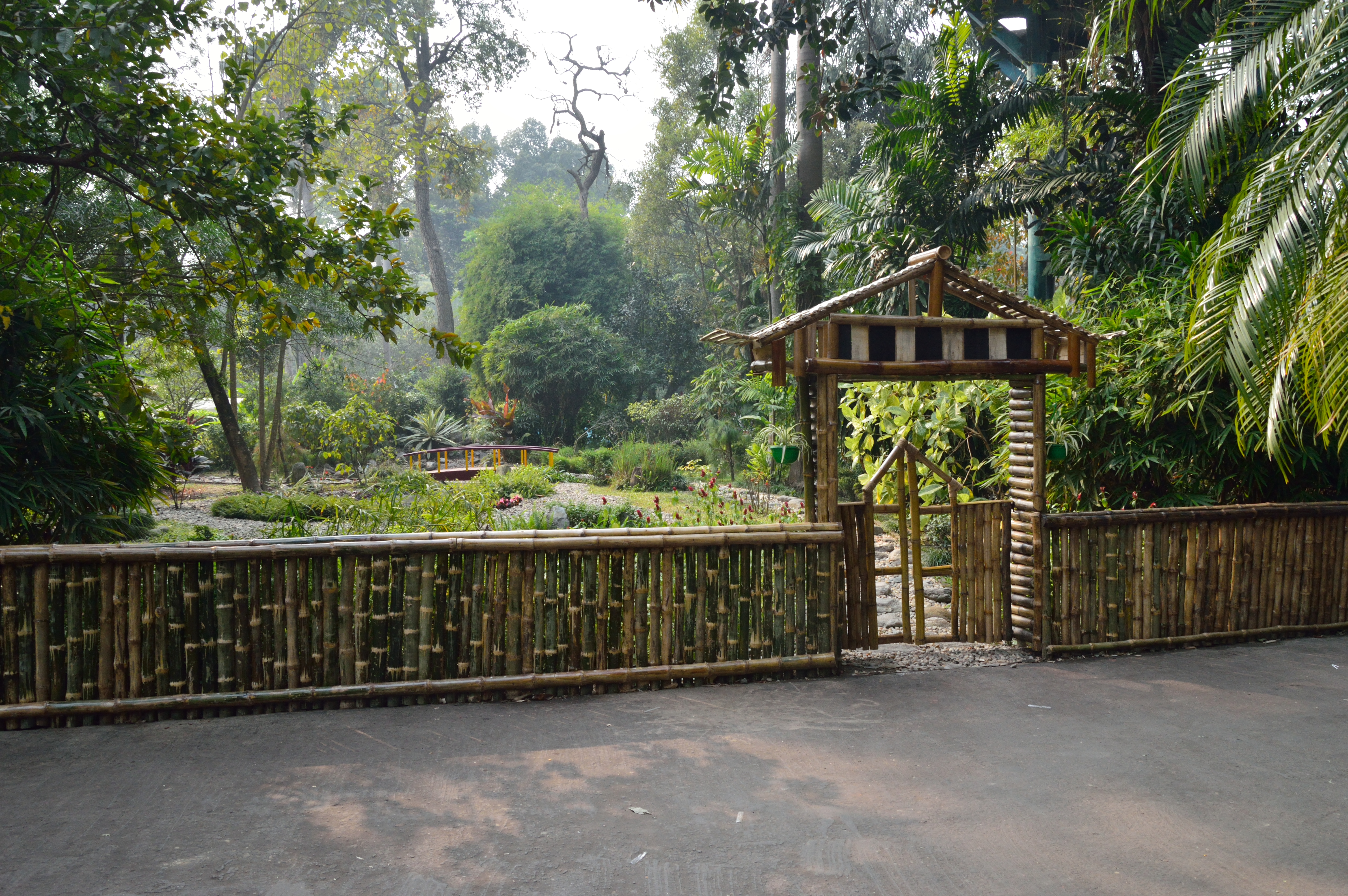 File Bamboo Fence With Gate Agri Horticultural Society Of India Alipore Kolkata 2017 01 05 2369 Jpg