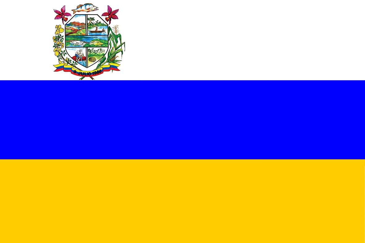 Bandera Municipio Bolivariano Angostura (Bolívar).png