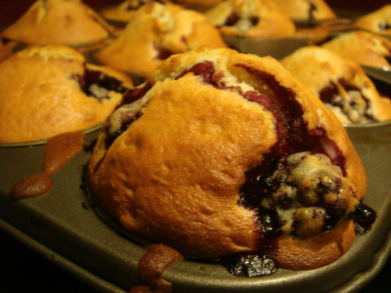 File:Blackberry muffins.jpg - Wikimedia Commons