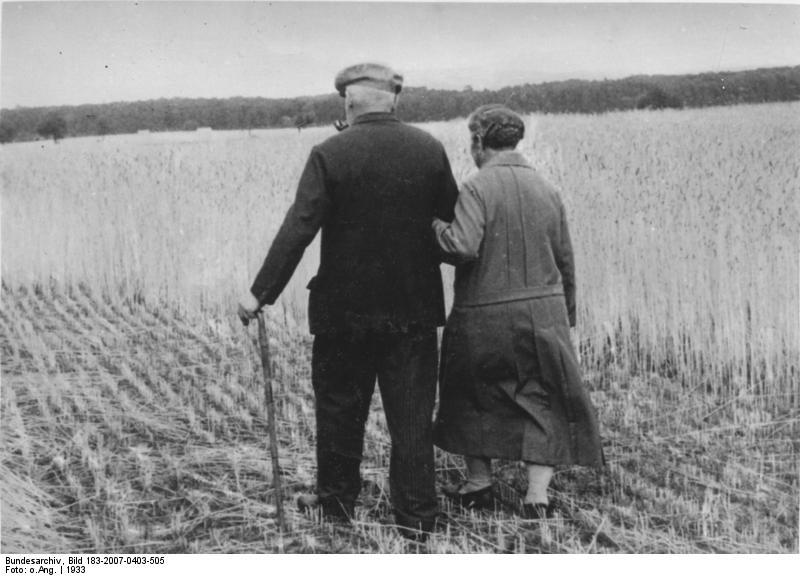 Bundesarchiv Bild 183-2007-0403-505, Spaziergang am Feldrand