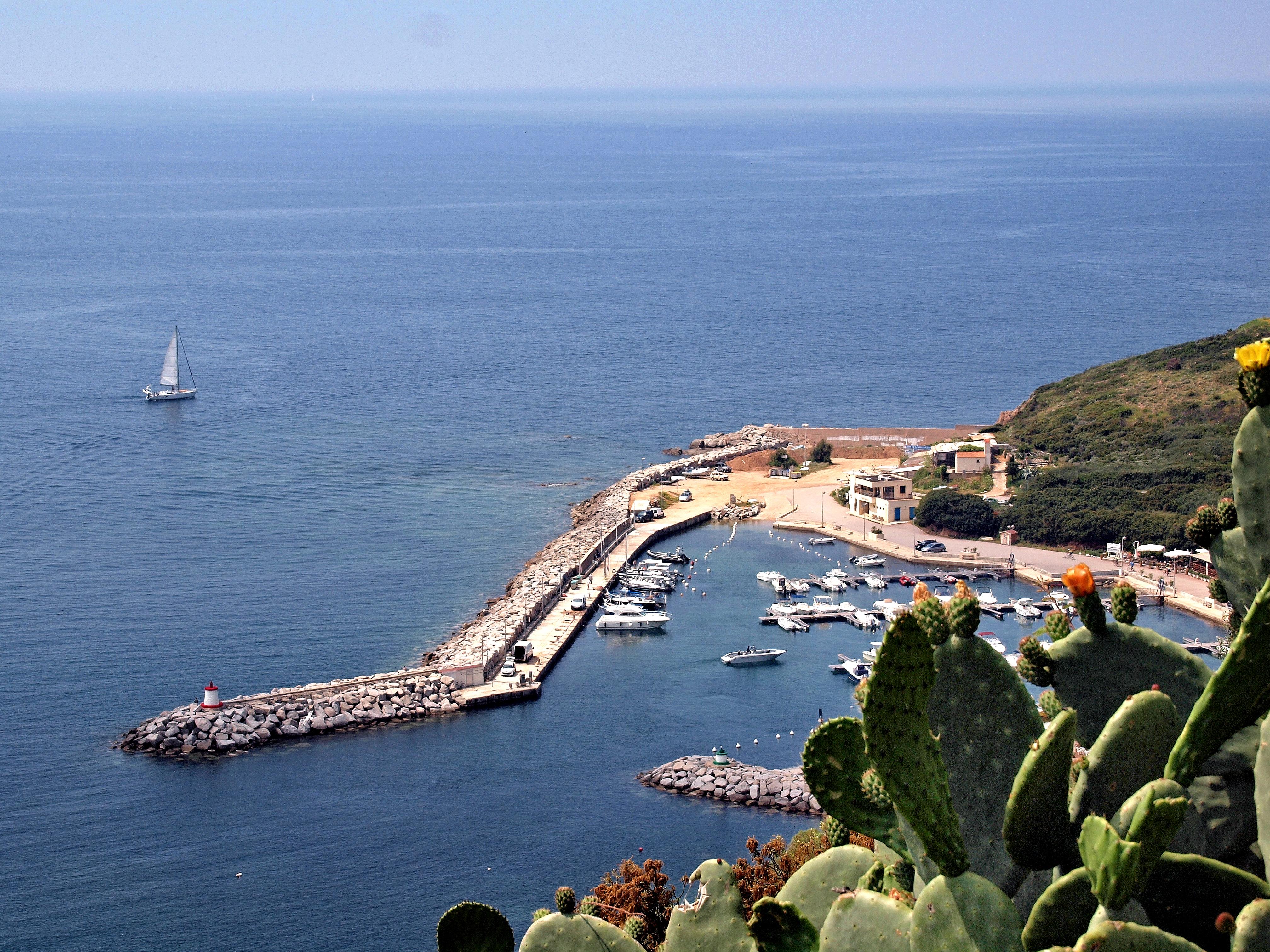 Croisières et bateaux touristiques à Cargèse  Corse
