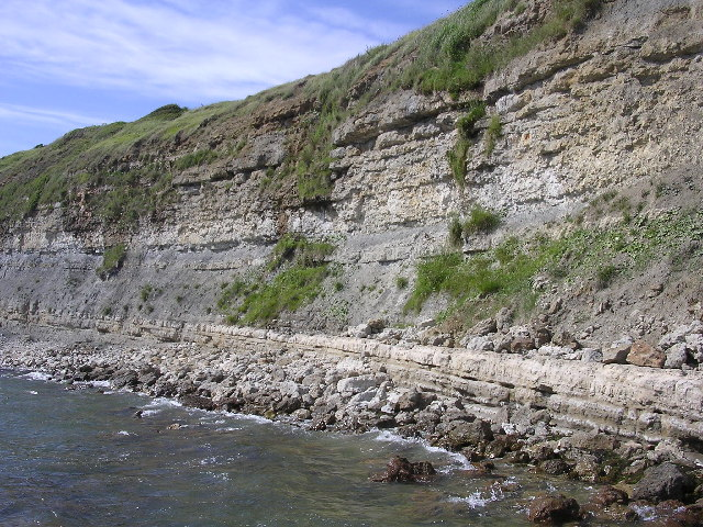 Cliff_face_west_of_Bran_Point_-_geograph