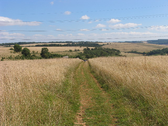 Cotswold Way east of Cleeve Common - geograph.org.uk - 45341