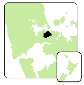 Epsom electorate 2008.png