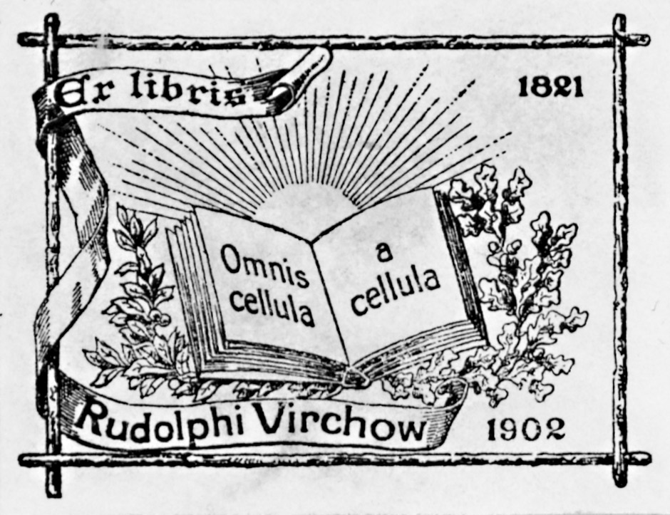 Description ex libris rudolf virchow