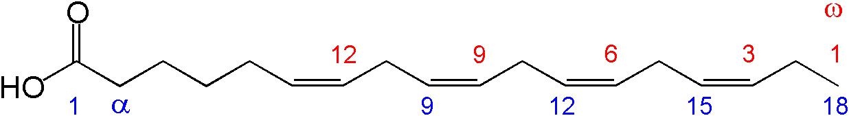 stearidonic acid