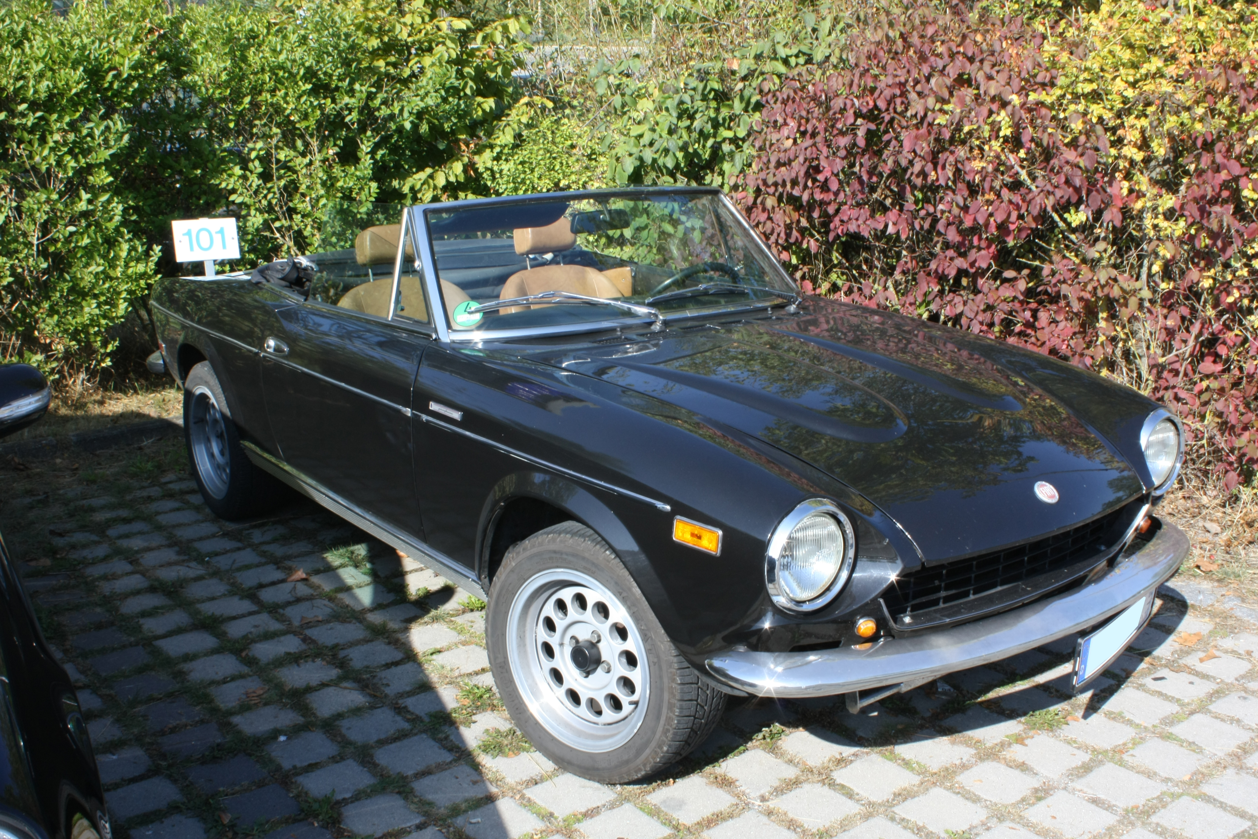 file fiat 124 spider wikimedia commons