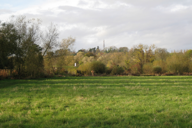 Flood-meadow, Newbold Comyn Park - geograph.org.uk - 1563337