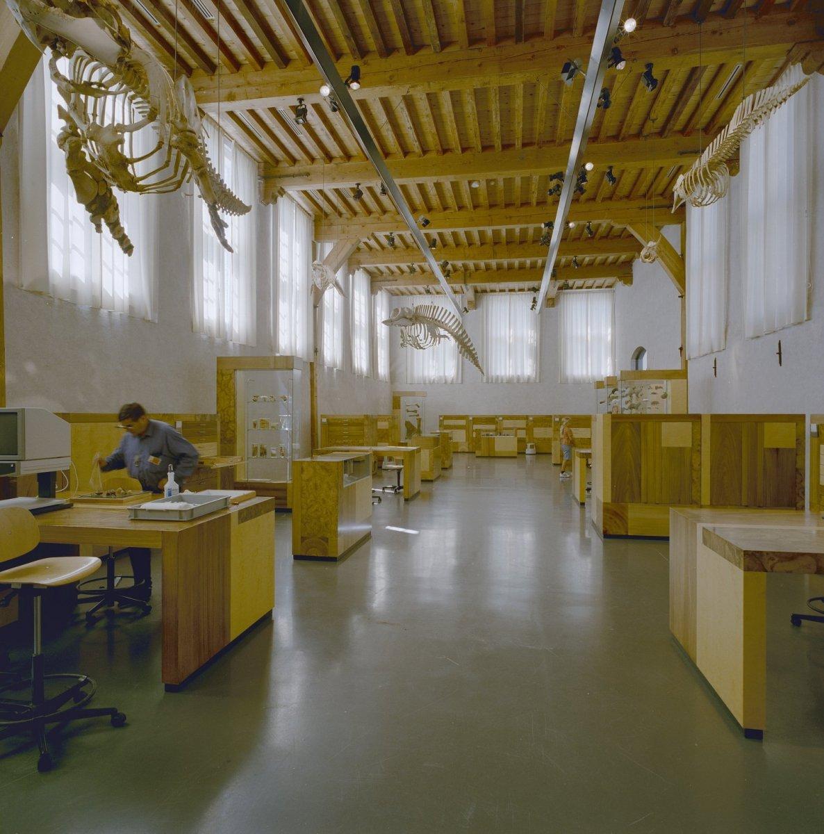 File Interieur werkruimte, overzicht plafond met houten balken   Leiden   20338222   RCE jpg