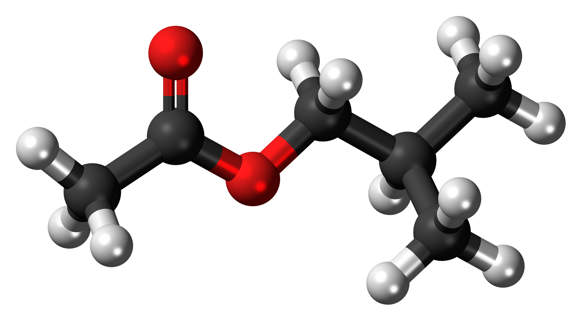 File:Isobutyl acetate 3D ball.png - Wikimedia Commons