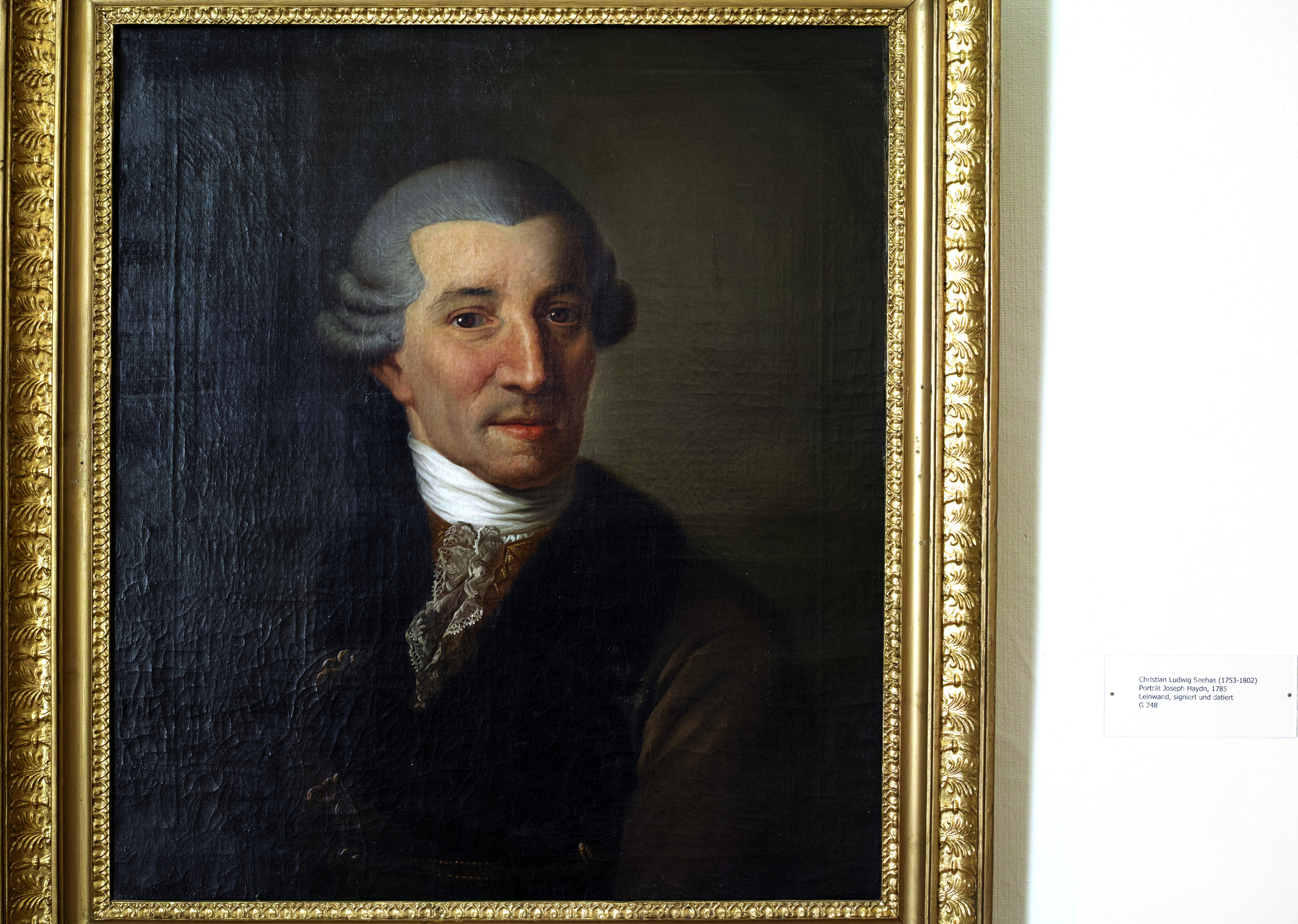 FileJoseph Haydn SchlossLWL