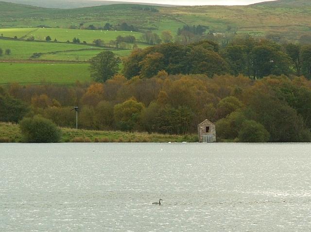 Looking across Talkin Tarn to the bird observatory - geograph.org.uk - 1055940