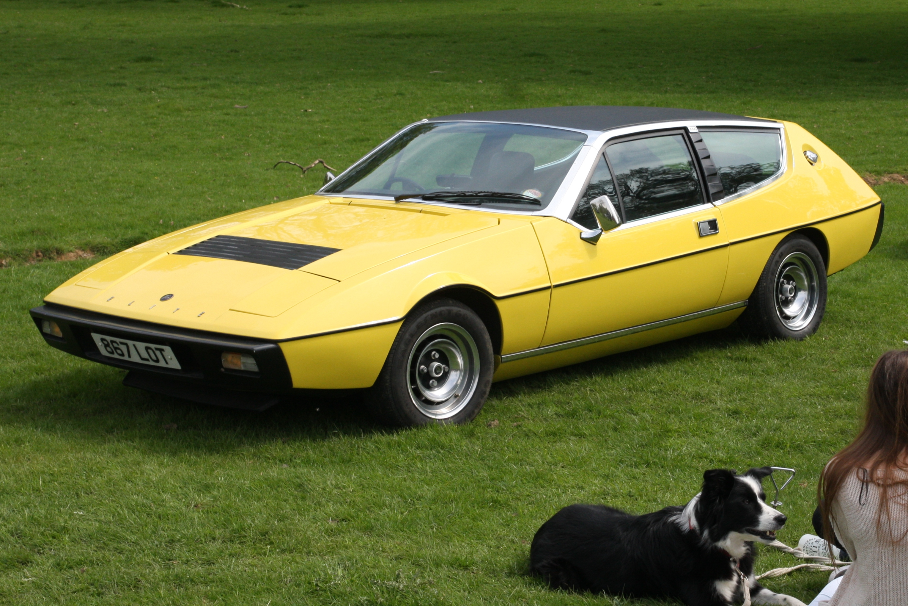 https://upload.wikimedia.org/wikipedia/commons/e/e4/Lotus_Elite_registered_February_1975_1973cc.JPG