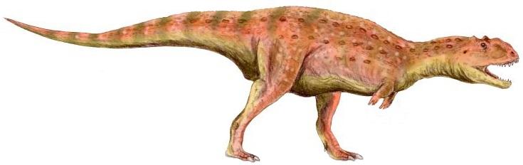 Fichier:Majungasaurus BW (flipped).jpg