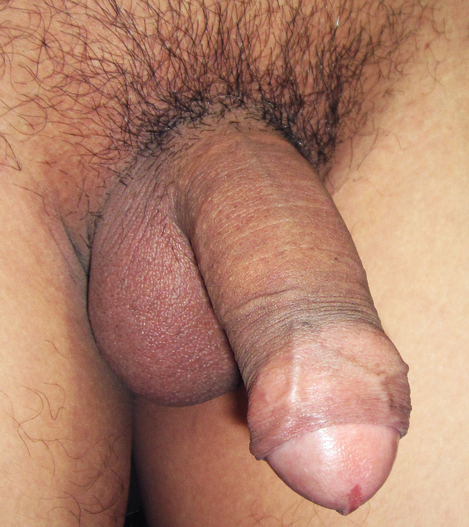 Male shaved genitals images