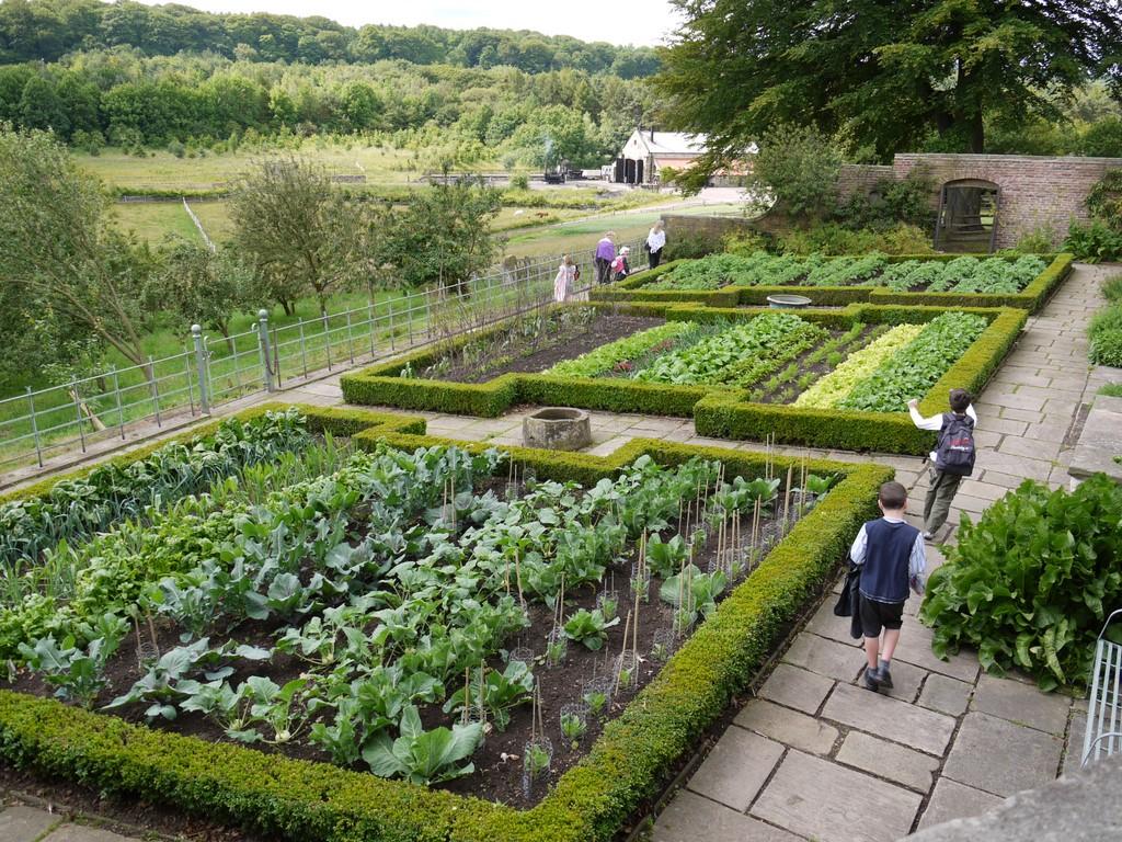 File pockerley old hall vegetable garden beamish museum for Fruit and vegetable garden
