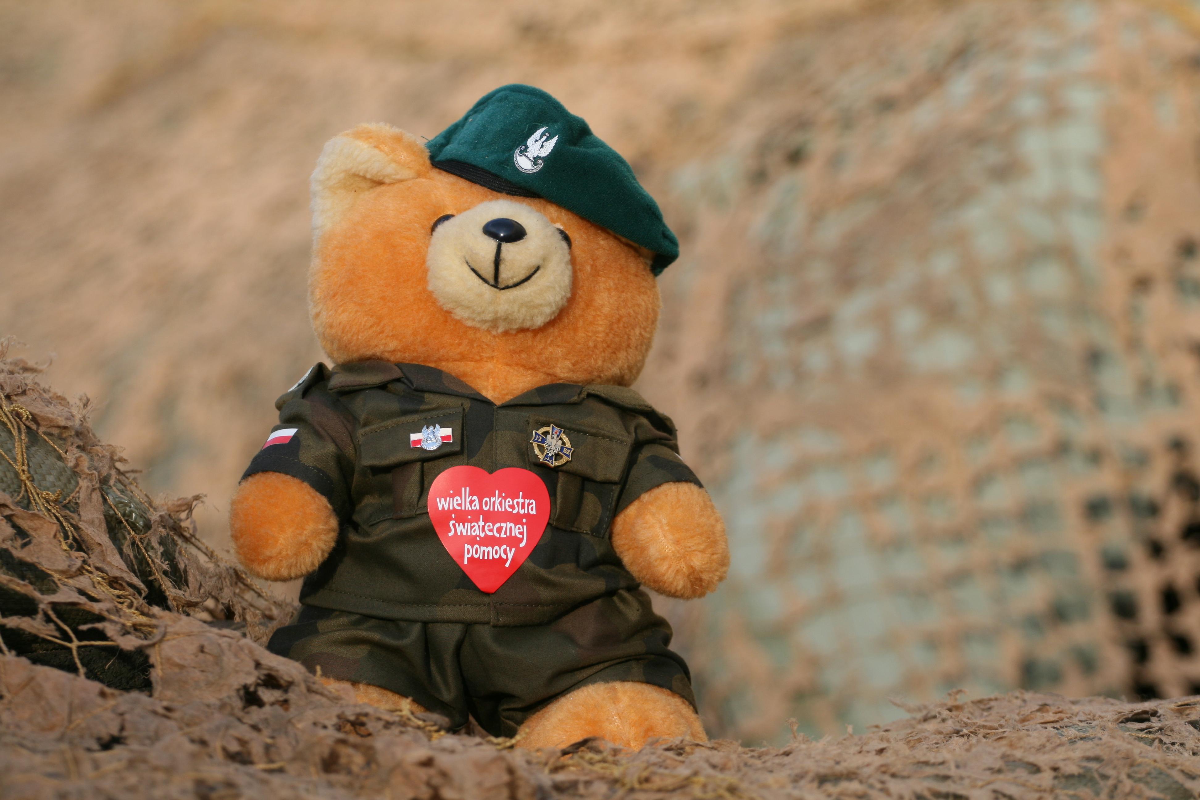File Polish Army Teddy Bear Jpg Wikimedia Commons