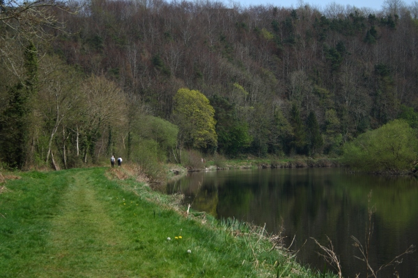 File:River Barrow Towpath - geograph.org.uk - 489173.jpg